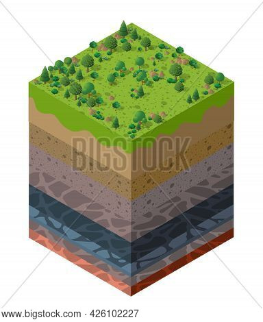 Forest Natural Landscape Soil Layers Geological And Underground