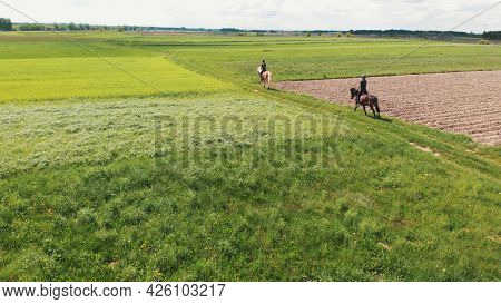 Aerial Shot Of Two Horse Riders On A Light Brown And A Dark Bay Horse Moving Across The Farm Field.