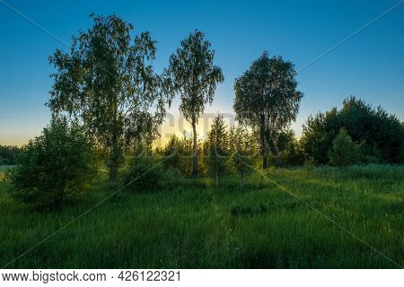 Golden Sunset Against The Blue Sky And The Sun's Rays Sliding On The Green Grass, Russia.