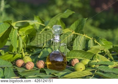 Walnut Oil In A Glass Bottle And Nuts On The Background Of Nature, Close-up. Walnut Oil On A Table W