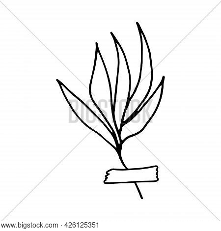Abstract Leaves Glued With Tape Icon. Hand Drawn Doodle. Vector, Scandinavian, Nordic, Minimalism, M