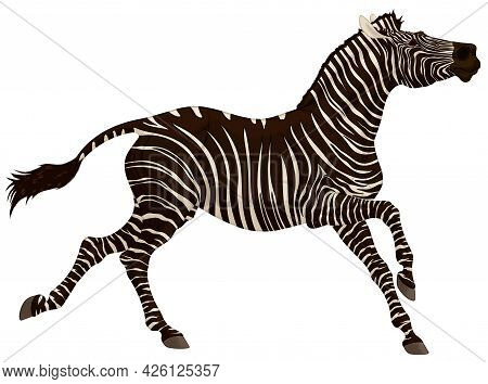Zebra Gallops With Its Head Up. Running Striped Stallion Laid Its Ears Back. Vector Clip Art For Goo