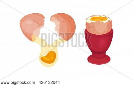 Raw Egg With Cracked Shell Showing Poured Yolk Vector Set