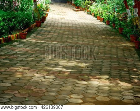 Cemented Brick Block Floor Garden Root Path Presented On Frame With Side Plant Pots Arrange In Serie