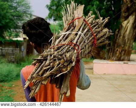 An Asian Man Carried Bunch Of Fire Wood On Shoulder Going On Road, Back Pose Of Village People.