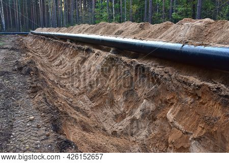 Natural Gas Pipeline Construction Work In Forest Area. Petrochemical Pipe On Top Of Wooden Supports.