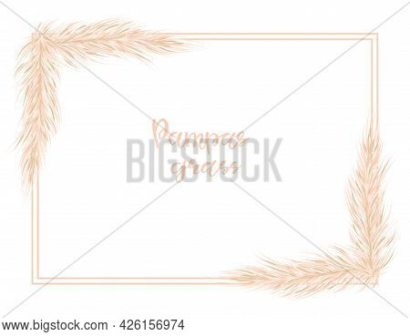 Pampas Grass Dried Natural . Background In Boho Style. Flat Lay With Copy Space, Top View. Vector Il