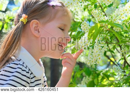 Little Girl Sniffing  Blooming Tree. Happy Child Enjoying Nature Outdoors. A  Child In The Garden Sn