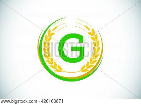 Initial Letter G Sign Symbol With Wheat Ears Wreath. Organic Wheat Farming Logo Design Concept. Agri