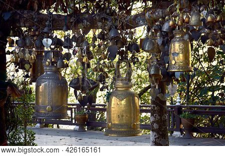Many Large And Small Bells Are Tied To A Tree At The Buddhist Wat Phrathat Doi Tung. Chiang Rai Prov