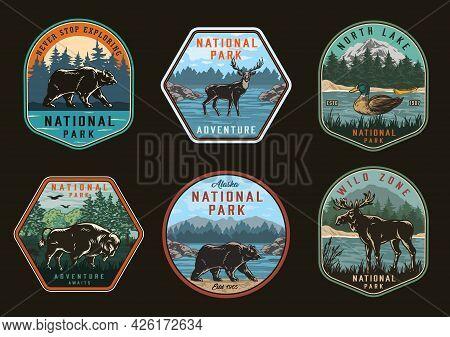 National Park Vintage Colorful Emblems With Bears Moose Bison Deer On Nature Landscapes And Wild Duc