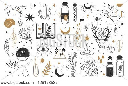 Mystic And Esoteric Elements. Moon, Witch Hands Crystals, Potions Flowers. Mystical Astrology, Magic