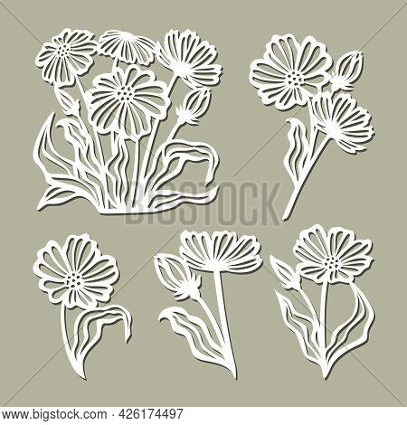 Set Of Flowers, Daisies, Chamomile. Plants Theme And Nature, Floral Elements -  Flowering Buds, Bouq