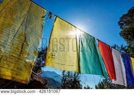 Prayer flags of Tibetan Buddhism with Buddhist mantra on it in Dharamshala monastery temple. There is the residence of Tibetan Buddhism spiritual leader Dalai Lama. Dharamsala, Himachal Pradesh, India