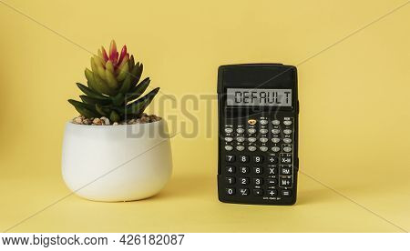 Business Term, Business Phrase On Calculator Display, Phrase Is Risk By Default. On A Yellow Backgro