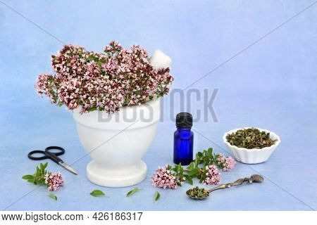 Oregano herb flowers in a mortar with essential oil bottle and dried herb leaves. Used in herbal medicine to ease IBS symptoms, is anti bacterial, anti inflammatory, anti viral and an anti coagulant.