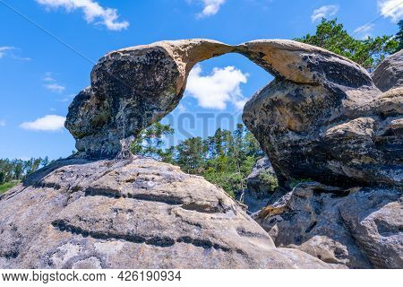 Unique Sandstone Arch In Pine Forest On Dry Sunny Summer Day. Bohemian Paradise, Czech Republic