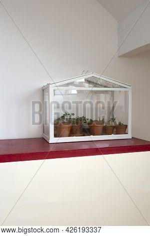 Small Greenhouse, Terrarium For Self Ecosystem Green House Plants, Modern Decoration, Bontanical Gro