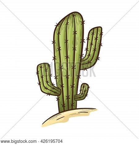 Simple Isolated Doodle Style Sticker. Tall Succulent Cactus With Thorns Grows In The Desert In The S