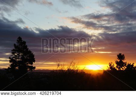 Sunsets On Horizon Over Land With Back-lit Trees Creating Scenic Backdrop.