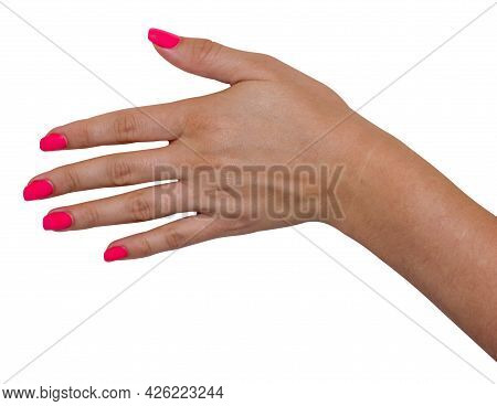 Hand Palm Up Isolated On White Background, Put The Subject