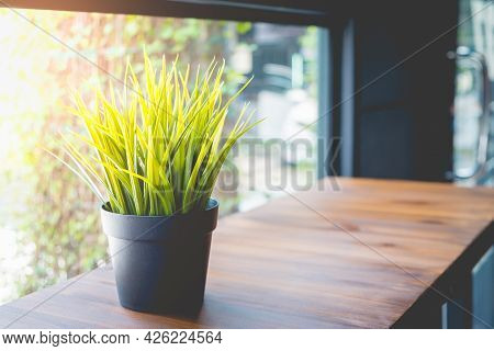 Close Up Green Color Grass In Flowerpot On Brown Wooden Table With Copy Space At Cafe.