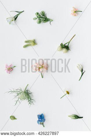 Various fresh flowers pattern on white background