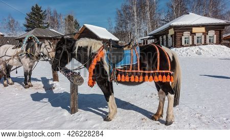 Black And White Horses Are Tied To A Rack On A Snowy Road. On Animals, Blue Decorative Blankets With