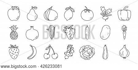 Fruit And Vegetable Sketch. Pineapple, Apple, Pear And Tangerine. Radish, Pepper, Pomegranate And Co