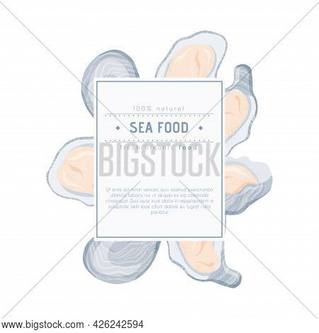 Fresh Tasty Seafood Clams, Oysters In Seashells Vector Hand Drawn Label Concept With Space For Text.