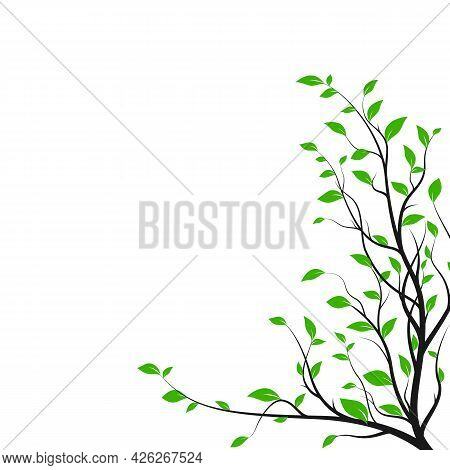 Silhouette Tree Branch With A Lot Of Green Leaves. Bush Silhouette Isolated On White Background. Dec