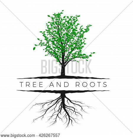 Tree Silhouette With Green Leaves And Root Isolated On White Background. Ecology And Nature Concept.