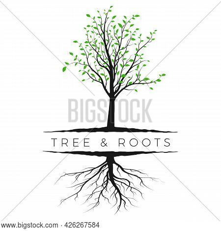 Tree Silhouette With Green Leaves And Root. Ecology And Nature Concept. Vector Illustration Isolated