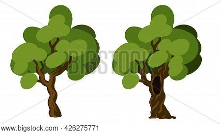 Hollow Tree And Healthy Tree Isolated On White. Hollow Oak Isolated On White Vector Illustration. Si