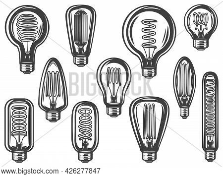 Vintage Lightbulbs Collection With Energy Efficient And Saving Bulbs Of Different Shapes Isolated Ve