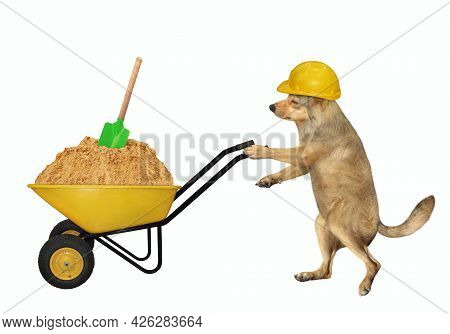 A Beige Dog Builder In A Construction Helmet Pushes A Wheel Barrow Full Of Sand. White Background. I