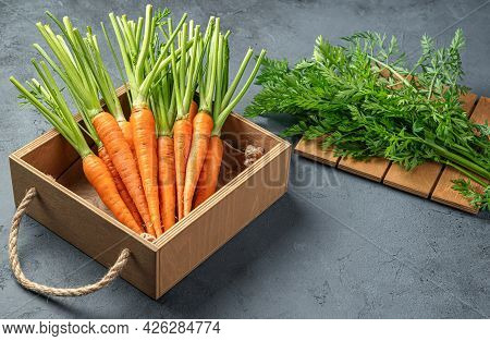 Young Carrots In A Wooden Box On A Gray-blue Background. Side View, Space For Copying.
