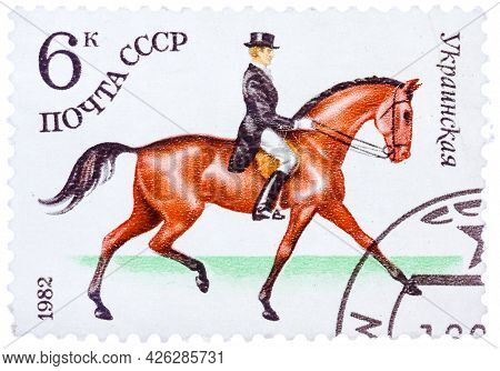 Ussr - Circa 1982: A Stamp Printed In Ussr Shows A Ukrainian Sports Horse For Dressage, Series Horse