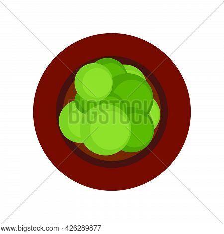 Flower Pot Leaf Top View Vector Icon Illustration Decoration Growth. Green Flower Pot Floral Design