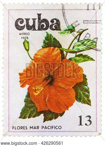 Cuba - Circa 1978:a Postage Stamp Shows Flowers Of The Pacific Ocean, Circa 1978