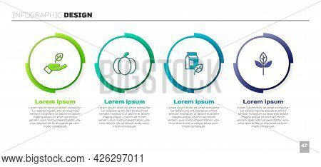 Set Plant In Hand, Pumpkin, Vegan Milk And Leaf Or Leaves. Business Infographic Template. Vector
