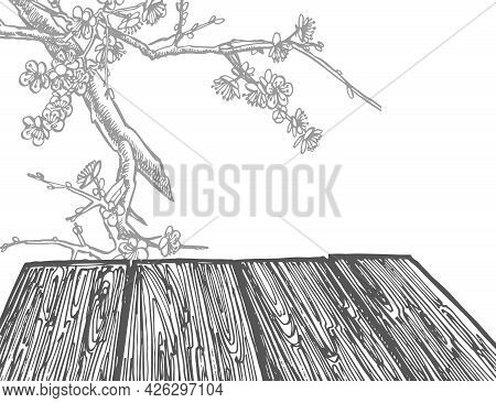 Wooden Table On White Background. Hand-drawn Vector Illustration In Vintage Style. Isolated Design E