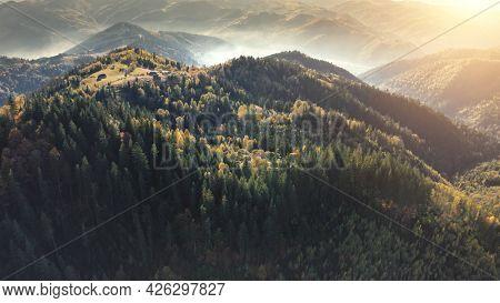 Sun pine forest at mountain peak aerial. Autumn trees at mist fog. Nobody nature landscape. Green mount ridges. Tourism and travel scenery. Carpathians radges, Ukraine, Europe. Cinematic vacation