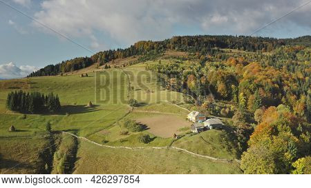 Mountain village at top aerial. Autumn nobody nature landscape. Green mount with cottage. Rural way at autumn greenery trees, grass. Carpathians ranges, Ukraine, Europe. Travel and tourism concept