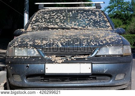 Severe Corrosion On The Old Blue Car. Abandoned Dirty And Rusty Car