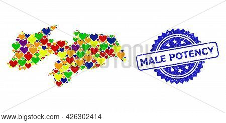 Blue Rosette Rubber Seal Imprint With Male Potency Text. Vector Mosaic Lgbt Map Of Paraiba State Fro