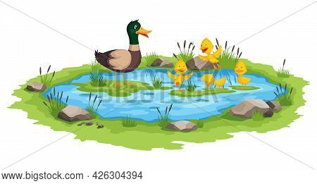 Mother Duck And Little Ducklings Swims On The Water In Pond. Cartoon Wild Bird With Cute Yellow Babi
