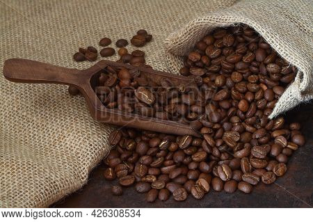 Roasted Coffee Beans Close-up In Wooden Scoop On Background Burlap Sack, Selective Focus