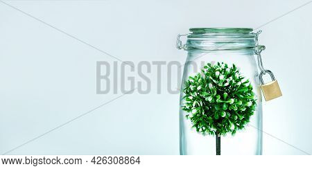 Protect The Nature. Tree In Glass Jar With Lock.  Banner.