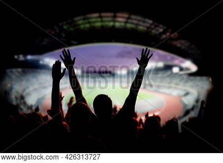 football or soccer fans at a game in a stadium